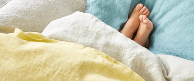 PROFLAX basic essentials intro bed linen bettwaesche leinen linnen