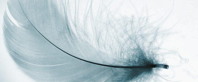PROFLAX basic essentials intro extras zusatzartikel kissenfuellungen tischschutz cushion fillings