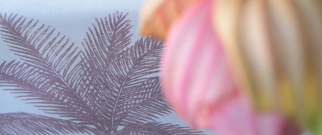 Proflax_SS2019_Isle_of_Style_rose_natur